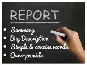 how to fix bug report