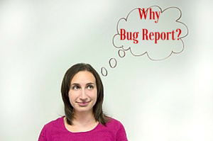 Why bug report